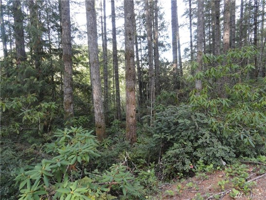 449 Lewis Rd W , Seabeck, WA - USA (photo 5)