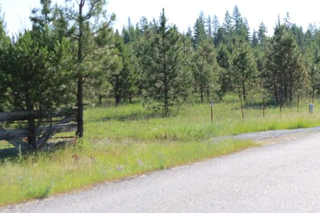 Lot M James Way , Oldtown, ID - USA (photo 3)