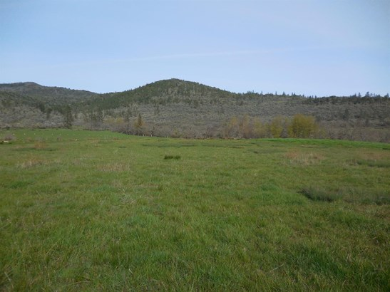 17210 Highway 62 , Eagle Point, OR - USA (photo 3)