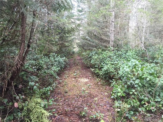 1555 Lost Hwy W , Seabeck, WA - USA (photo 2)