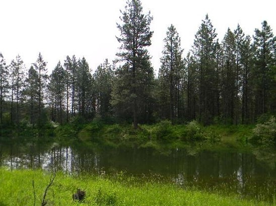 Tract 1 Off Leclerc Rd , Usk, WA - USA (photo 3)