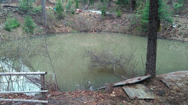 105770 Fork Trail Creek Rd , Trail, OR - USA (photo 1)