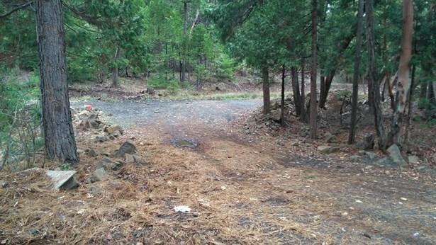 105770 Fork Trail Creek Rd , Trail, OR - USA (photo 2)