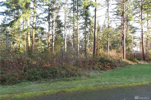 Lylus Lane Lane , Port Hadlock, WA - USA (photo 3)