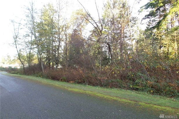 Lylus Lane Lane , Port Hadlock, WA - USA (photo 4)