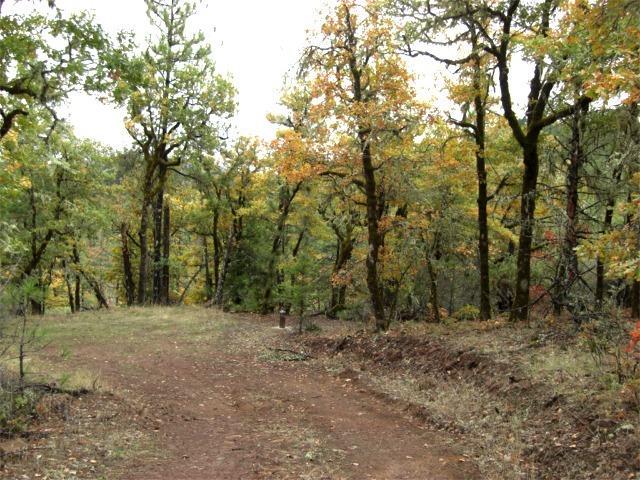 0 Danconia Dr , Trail, OR - USA (photo 1)