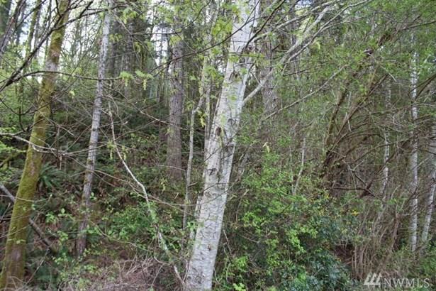 1 Of Sp#30 Yew Tree Lane , Tahuya, WA - USA (photo 3)