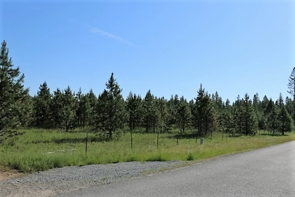 Lot M James Way , Oldtown, ID - USA (photo 1)