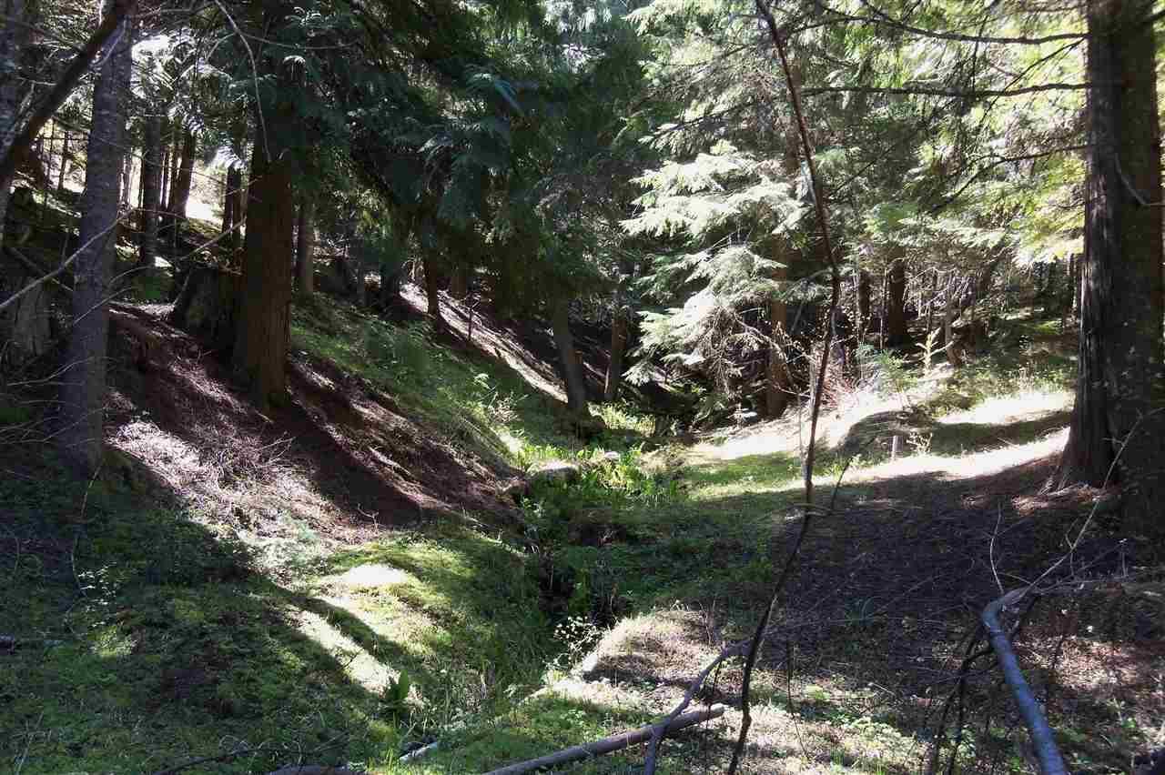 26004 E Timberwolf Ln , Newman Lake, WA - USA (photo 5)