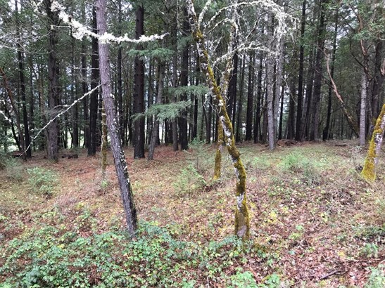 522 W Evans Creek Rd , Rogue River, OR - USA (photo 4)