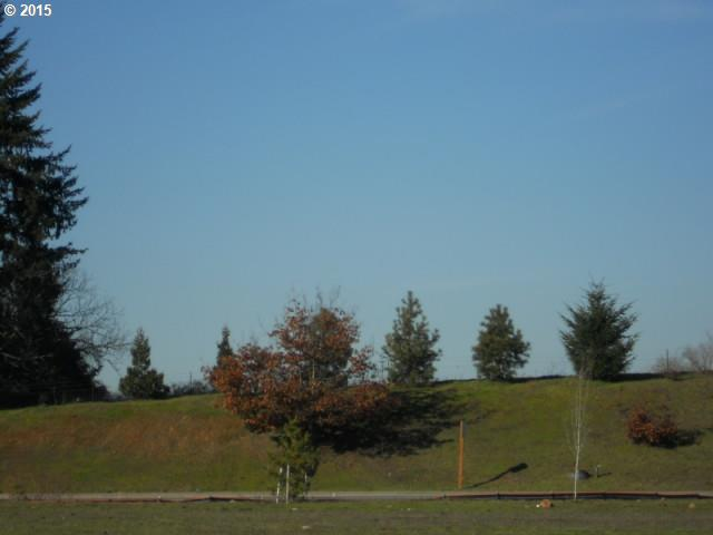 0 Battlecreek Rd , Salem, OR - USA (photo 5)