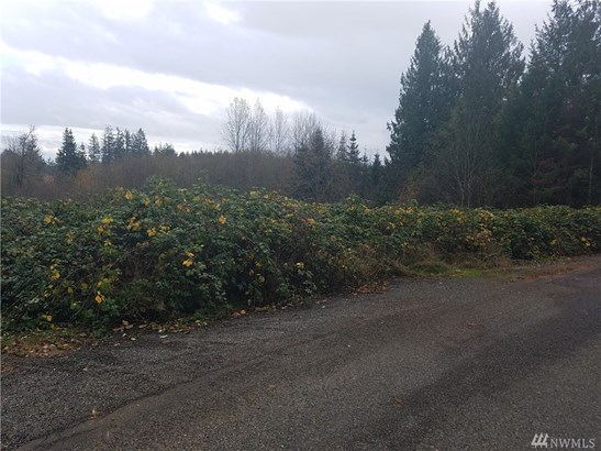 Hemlock Rd , Chehalis, WA - USA (photo 5)