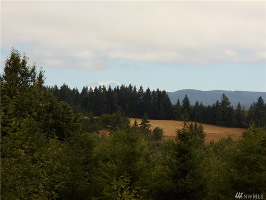 280 Misty Hill Rd , Toutle, WA - USA (photo 1)