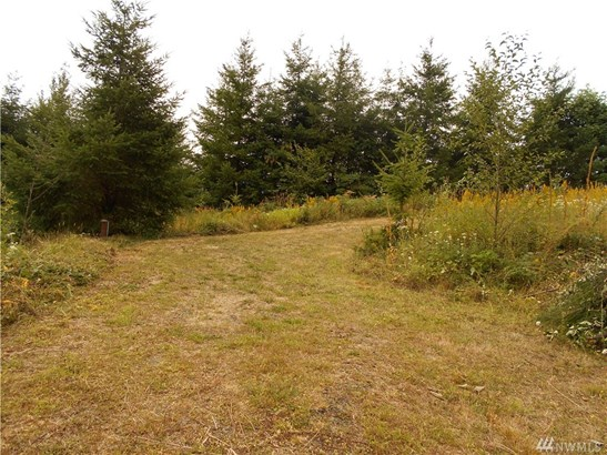 280 Misty Hill Rd , Toutle, WA - USA (photo 2)