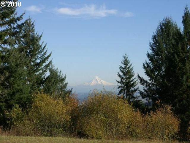 4 Briarwood  4, Scappoose, OR - USA (photo 1)
