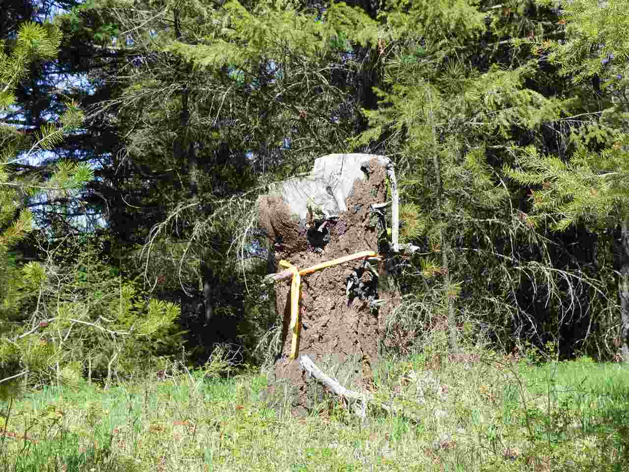 4711xx Springdale Hunters Rd , Springdale, WA - USA (photo 4)