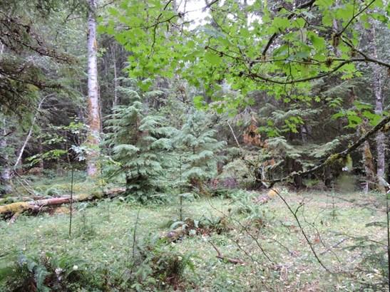 17226 Mountainside Dr E , Greenwater, WA - USA (photo 1)