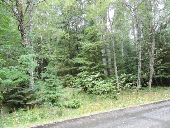 17226 Mountainside Dr E , Greenwater, WA - USA (photo 2)
