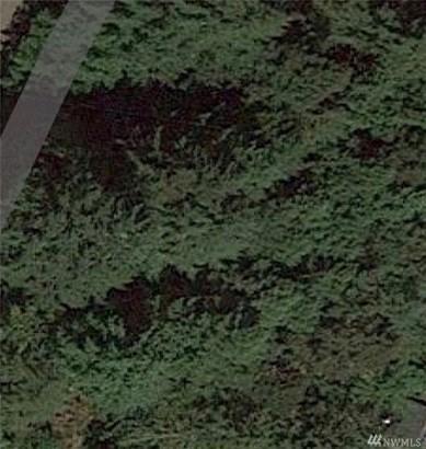 11025 Spruce Dr  5, Anderson Island, WA - USA (photo 1)