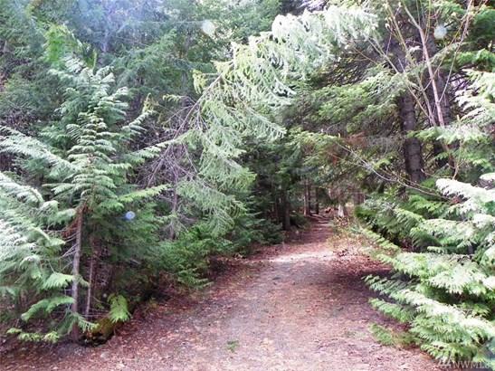 60 Lot 60 Mountain Home Lane , Easton, WA - USA (photo 1)