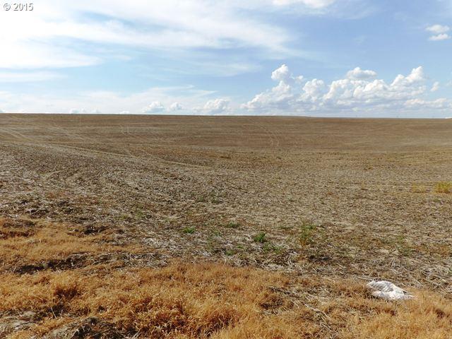 Hwy 11 , Milton Freewater, OR - USA (photo 3)