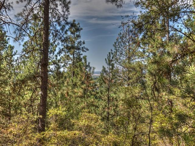 875 N Bella Lago Ln , Liberty Lake, WA - USA (photo 4)