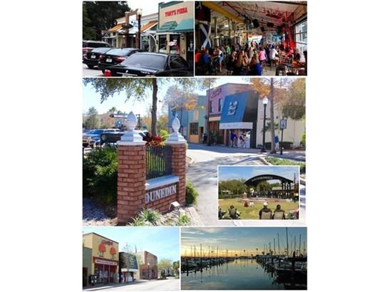 Single Family Home, Florida - DUNEDIN, FL (photo 3)