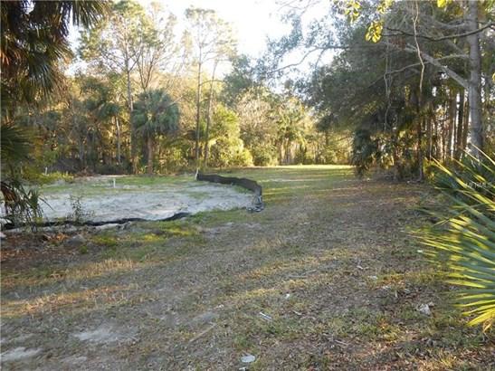Residential - TARPON SPRINGS, FL (photo 4)