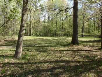 1.6 Acre!  Lot Size is Approx. 200x240 Seller will have it Surveyed Prior to Closing.  We're Calling it Lot