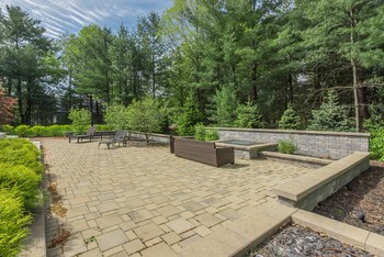 Beautiful back yard patio area is enhanced by towering pine trees that are green all year long. (photo 2)