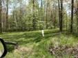 1.6 Acre Beautiful Cleared Building Site. With Drive way installed. Lot Size is Approx. 300x270Seller will have Surveyed Prior to Closing.