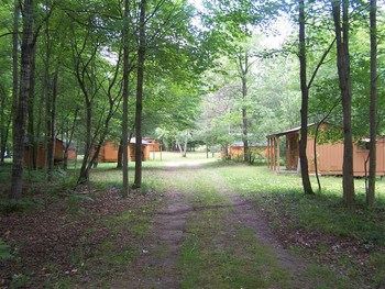 Ready for hunting season! This is a fully operational turn key 70 acre hunting camp. It features 4 sleeping cabins, cookhouse, 2 storage buildings, roads,  RV trails, food plots, apple trees, shooting range, pond with wildlife flooding, hunting blinds, wildlife feeders, 4 wheeled Kawasaki mule utility vehicle, buck pole, well pump and much, much more.Call agent for extensive list  of camp inventory that is included or contact me for your personal tour. (photo 1)