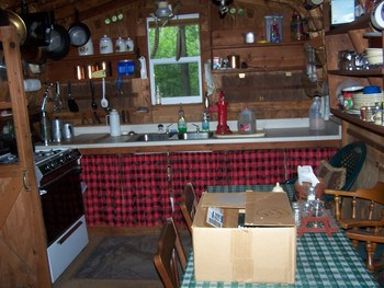 Kitchen in the cook house with gas range sink with well pump. all dishes, pots, pans remain. (photo 4)