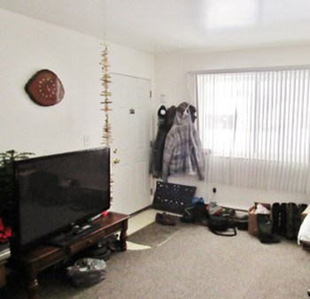 View of the large living room. (photo 3)