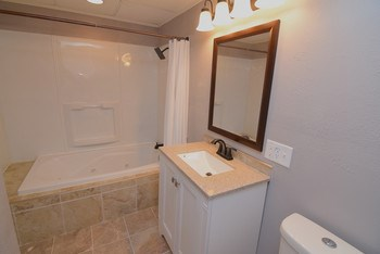 New bathroom in the basement featuring a jacuzzi tub and attached to the lower level bedroom. (photo 5)