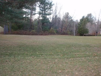 Ideal Building Sight near the Village of Edenville. 1.04 Acre Lot with a Slopping Hill that Would be Nice for a Walk-Out Basement.  Natural Gas & City Water at the Road. (photo 1)