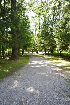 The driveway meanders back into the property.  It is nicely tree lined and keeps the property private from the main road. (photo 4)
