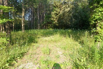 10 acres that could be industrial zoned. Easy on and off to US 10. (photo 1)