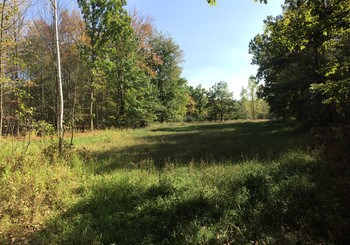 Nearly 6 acres vacant land ready to build your dream home.  Lot already has established driveway and site for new home. Partial wooded setting makes for great balance of open space, privacy and picturesque setting to take in from a future back porch.  Septic on site was installed approximately 2005/2006 right before the previous home on the property was removed due to fire. There are no warranties on the septic and recommend buyer perform due diligence to determine condition. (photo 1)