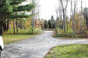 Nicely wooded lot with your own Private Drive way (photo 5)