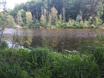 0 S  Forest Lake Drive, Alger, MI - USA (photo 4)