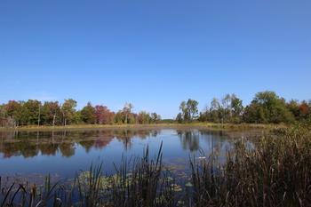 Gladwin, MI - USA (photo 3)