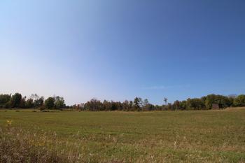 Gladwin, MI - USA (photo 4)