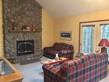 stone gas fireplace (photo 3)