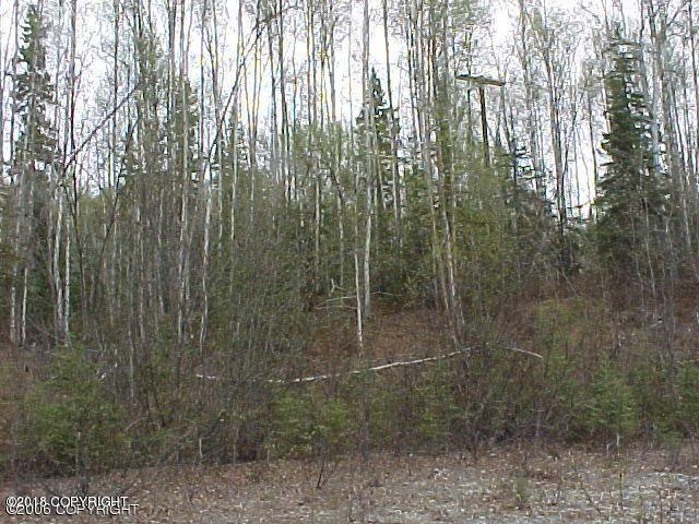 17821 W Marion Drive, Big Lake, AK - USA (photo 1)