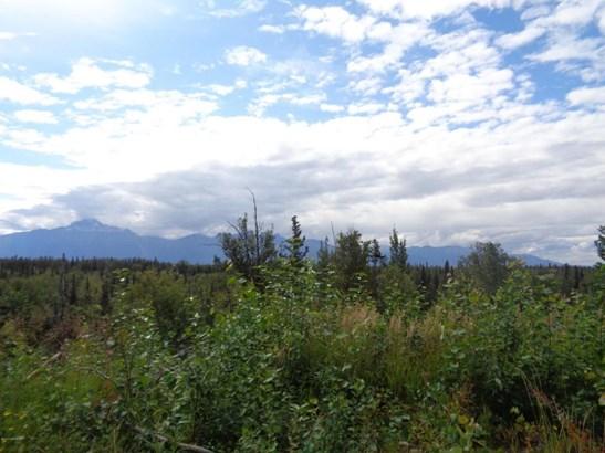 1800 S Low Road, Palmer, AK - USA (photo 1)