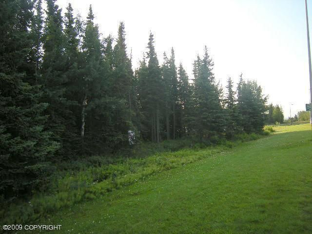 129 Bridge Access Road, Kenai, AK - USA (photo 4)