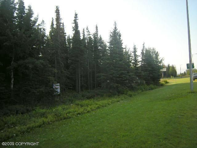 129 Bridge Access Road, Kenai, AK - USA (photo 5)