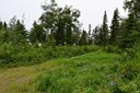 1618 Toyon Way, Kenai, AK - USA (photo 1)