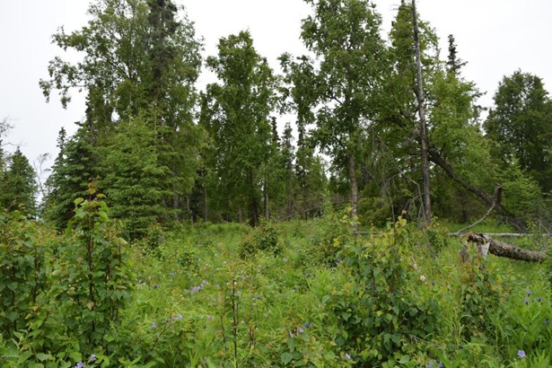 1618 Toyon Way, Kenai, AK - USA (photo 4)
